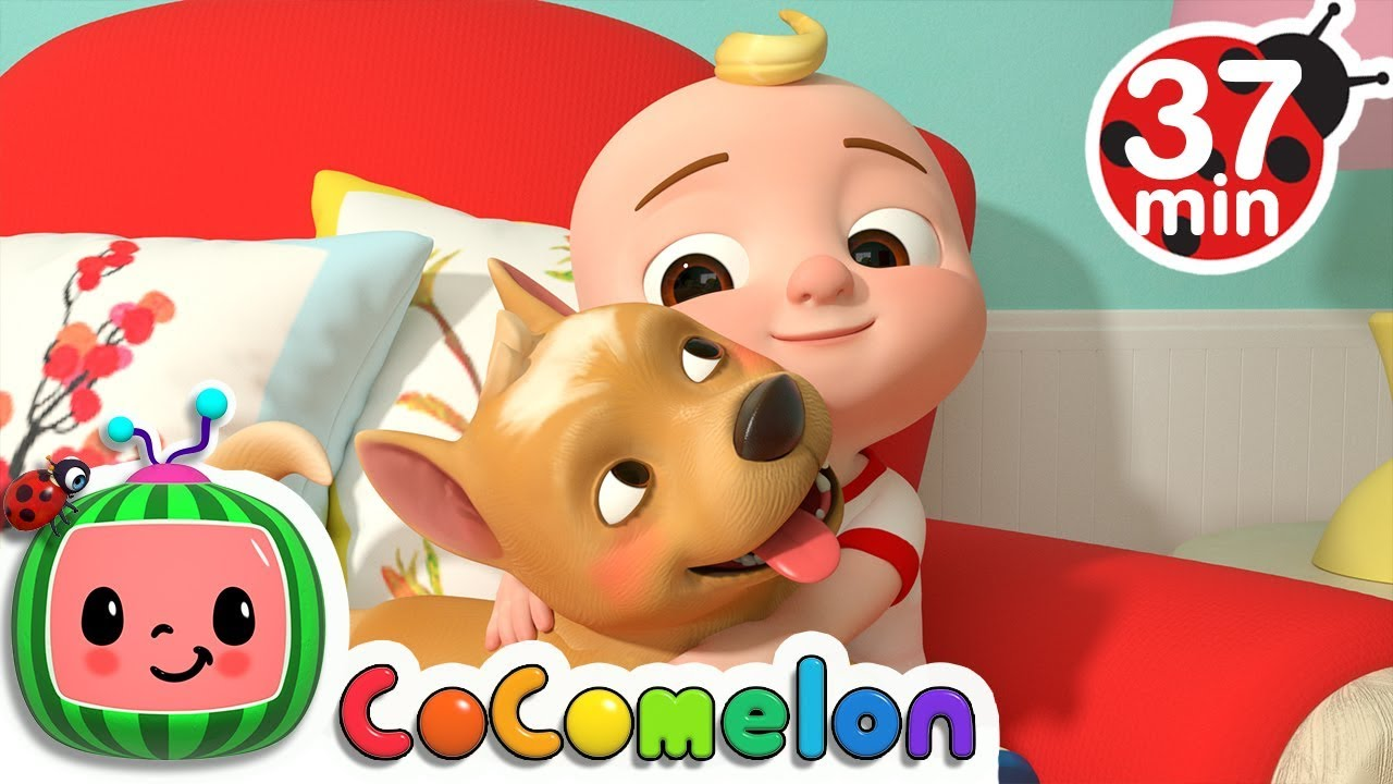 My Dog Song + More Nursery Rhymes & Kids Songs - CoCoMelon