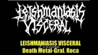 Leishmaniasis Visceral - En el portal