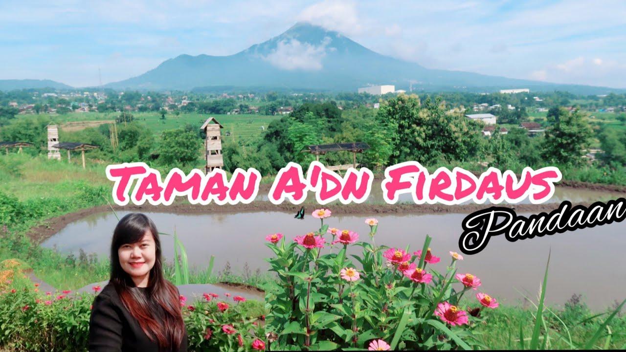 Taman Bunga A Dn Firdaus Sumbergedang Pasuruan Jawa Timur