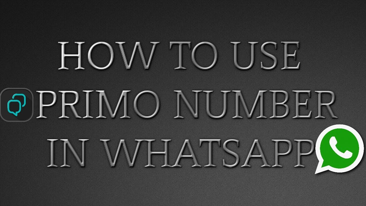 How To Use Primo Number In Whatsapp