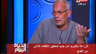 مدير'الإرشاد الزراعي' السابق: استيراد مصر للقمح 'عيب' (فيديو)