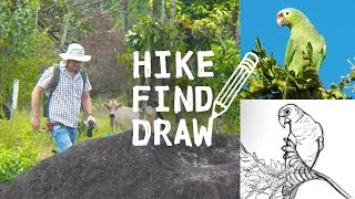 Hiking Boulders in Costa Rica & Drawing a Parrot