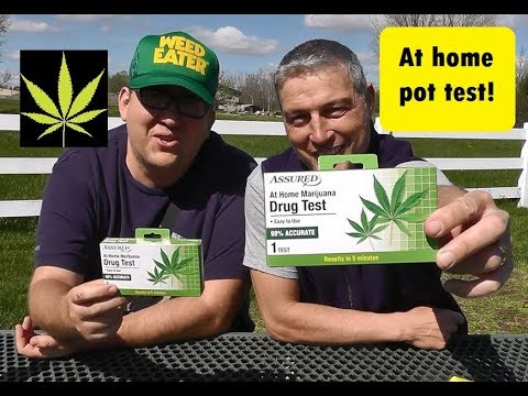 Dos Dollar Store Dudes Take The Pot Tests!