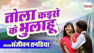 तोला कइसे के भुलाहू | Chhattisgarhi Folk Song 2017 | Sanjivan Tandiya | Natraj Cassette Barhi