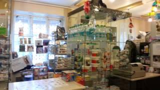 Ветаптека  «Согласие» (Екатеринбург) на ул. Гагарина