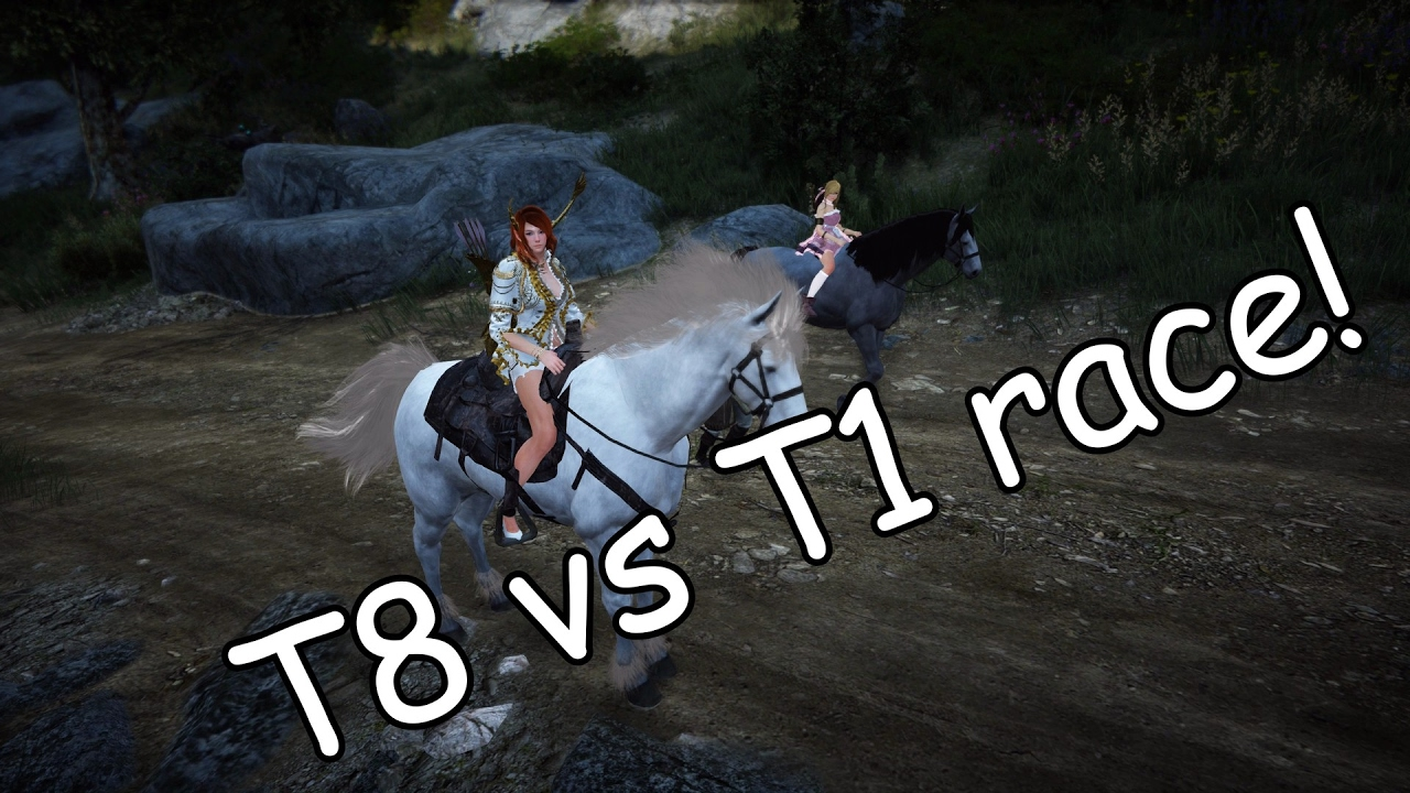 Black Desert - T8 vs T1 horse race!