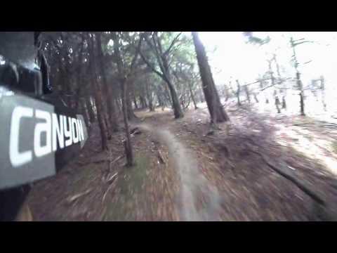 Autumn ride in Friston Forest