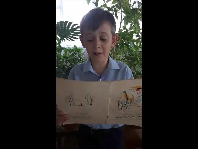 Изображение предпросмотра прочтения – ИванЧопивский читает произведение «Рыбка» А.А.Фета