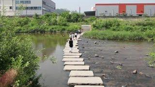 하천, 도시 생태의 보고 / YTN 사이언스