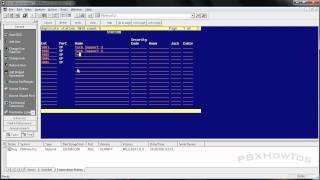 THE BASICS - Duplicate Station - Avaya PBX - HD