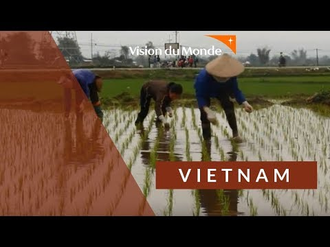 Bienvenue dans notre programme du Vietnam