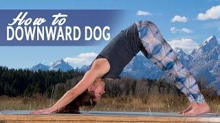 How To Downward Facing Dog Pose or Adho Mukha Svanasana with Adi Amar