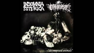 Insomnia Isterica - Split with Compost - Decomposed Animals - (2009)