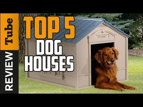 ✅Dog House: Best Dog House (Buying Guide)