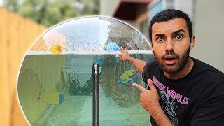 I TOOK A BATH IN A ZORB BALL FOR 24 HOURS!!! Almost Drowed...  (Swimming on Land Challenge)