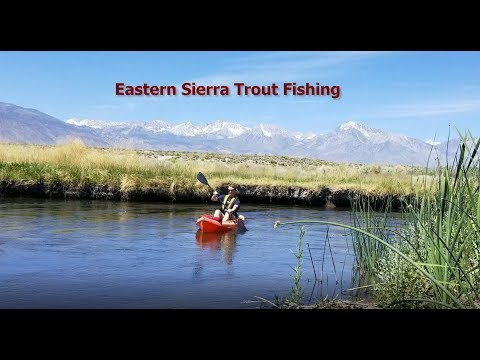 Eastern Sierra Trout Fishing
