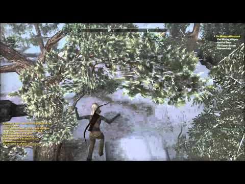Elder Scrolls Online:  Nightblade Assassination spec (level 2-5ish) Part 2