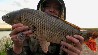 ЕЛЕ ПОДНЯЛ ИЗ ТРАВЫ ПОПАЛ НА САЗАНА рыбалка на реке Карась идёт рыбалка 2021