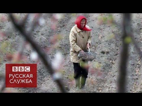 Белоруссия: 30 лет после Чернобыля