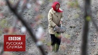 Белоруссия: 30 лет после Чернобыля(Четверть белорусской территории подверглась радиационному загрязнению после аварии на Чернобыльской..., 2016-04-26T18:00:02.000Z)