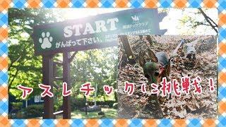 栃木県の那須高原にある『那須ドッグクラブ』 犬の運動機能を刺激し、ト...