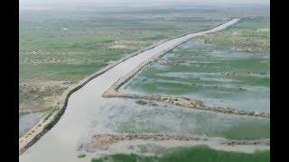 Revitalising China's Kubuqi Desert| CCTV English