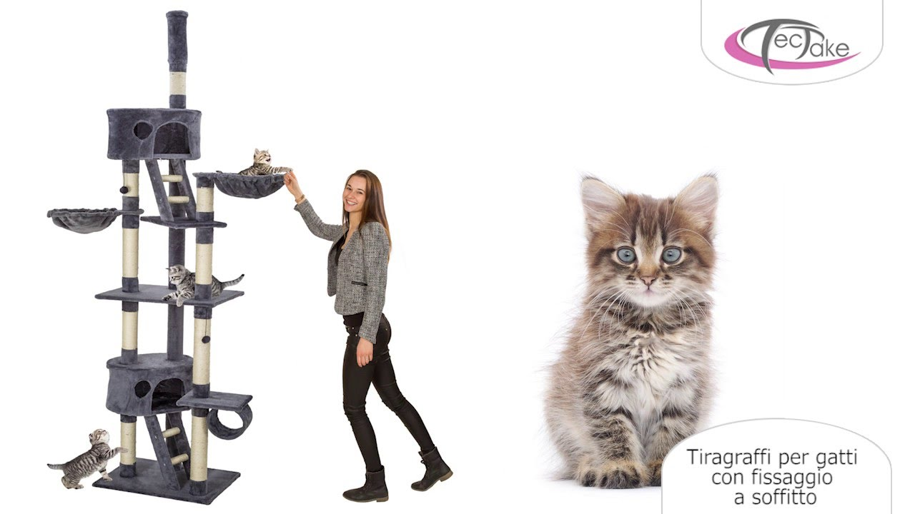 moitié prix Nouvelle liste vente en magasin tectake - Tiragraffi per gatti con fissaggio a soffitto