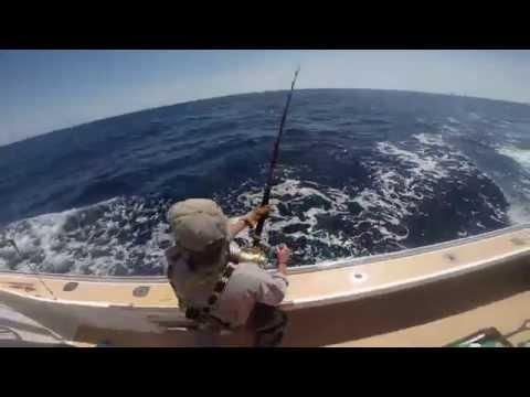 Big Tuna almost spools a reel on the Kodiak