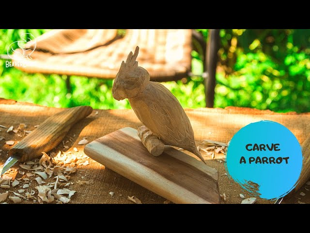 Wood Carving for Beginners - Parrot Carving Out of Wood