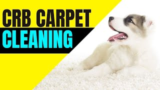 8 Cool Ways To Make Money With CRB!  (For Professional Carpet Cleaners!)