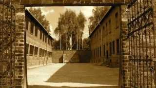 Auschwitz Concentration Camp visited by tourist