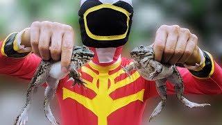 tro choi di san con ech  frog catching game  chichi toysreview tv