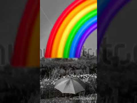 Dinko Šimunović Duga Rainbow