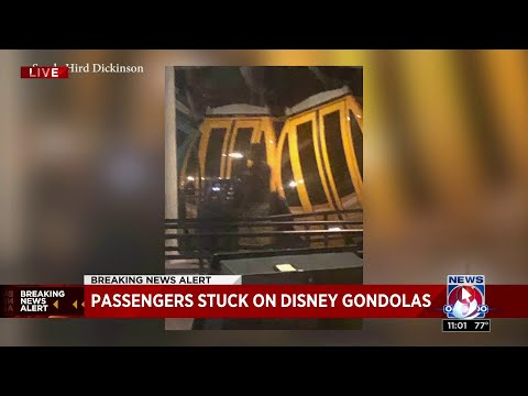 Lynch and Taco - Passengers Were Stuck For Hours On New Disney Skyliner Gondolas
