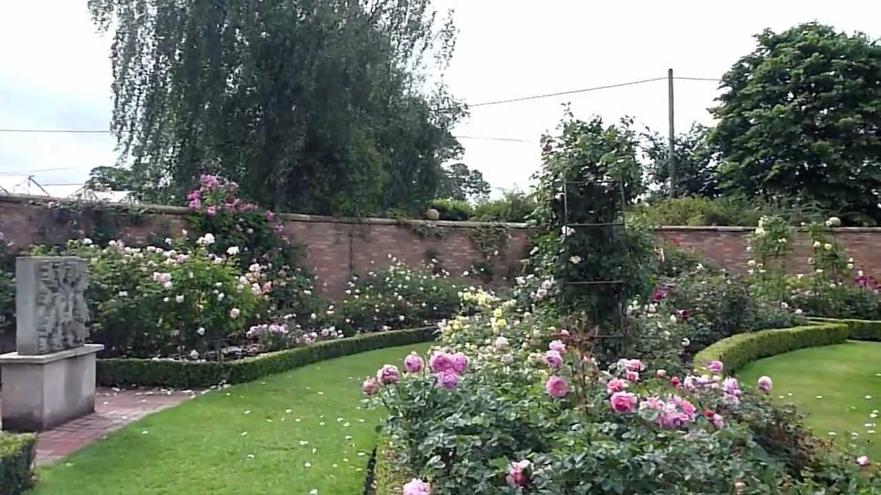 David austin english rose gardens stroll summer 2011 youtube for Garden design ideas kent