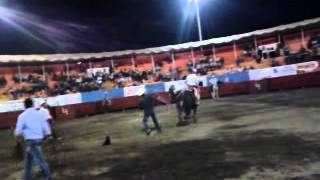 Taza De Jalisco