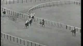 Mill House 1963 Cheltenham Gold Cup
