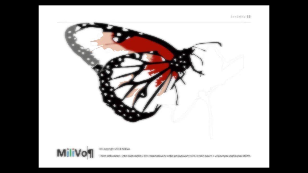 Kurz Kresleni Malovani Motyl 8 Barvami Youtube