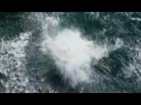 Open Water 2 Trailer.mp4
