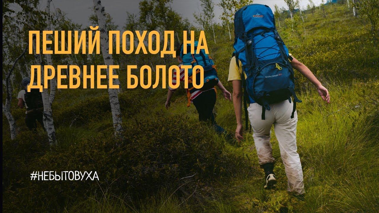 Пеший поход на болото Ельня Беларусь
