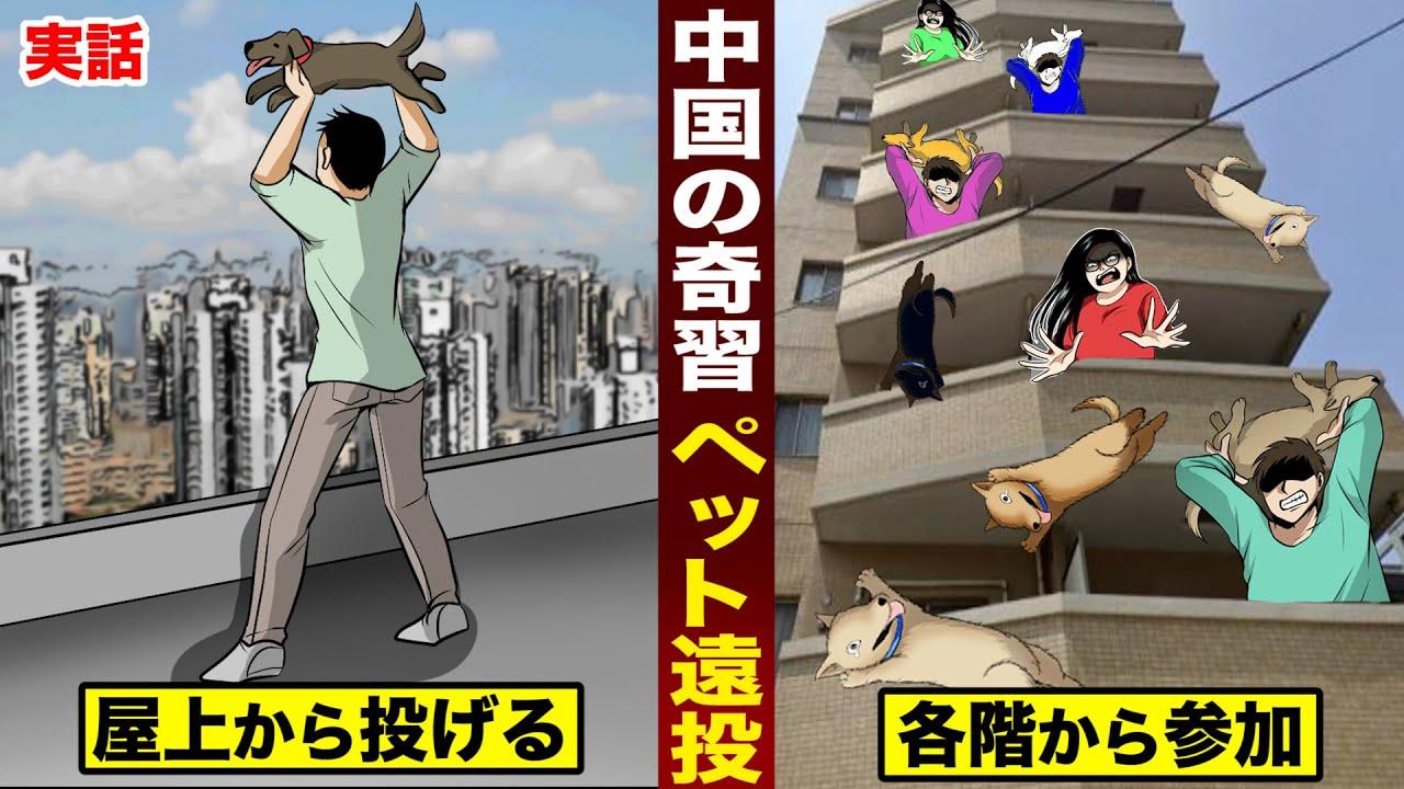 【実話】中国の奇習「ペット遠投」。罪なき動物たちを...屋上から放り投げる。