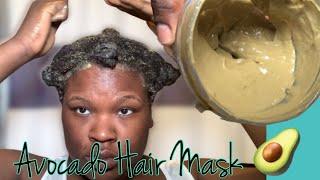 DIY Avocado Hair Mask With Slippery Elm Root Aloe Natural Hair