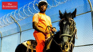 Can horse-whispering prevent reoffending? | The Economist