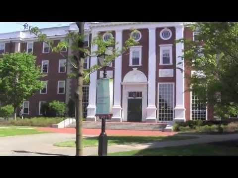 ВЛОГ: Гарвард Бизнес Школа (день 2) / Harvard Business School