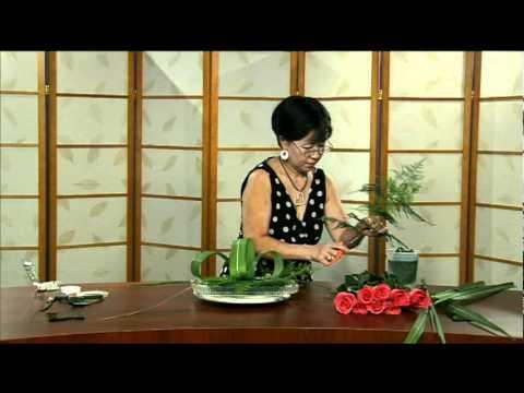 Cam Hoa - Ha Yeu Thuong