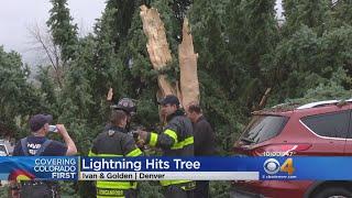 Lightning Strike Causes Homeowner's Tree To Explode
