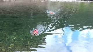 3連休の最後に川遊びしてきましたー!