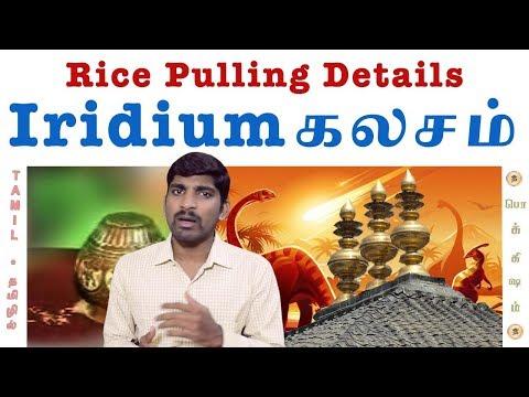இரிடியம் உண்மைகள் யாவை? | Rice Pulling Details | Iridium Metal | Tamil | Pokkisham | TP