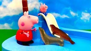 Peppa Pig - Swinka Peppa Bajka po Polsku - A tu na basenie FOKI