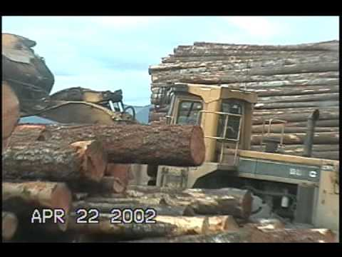 Unloading logs at saw mill